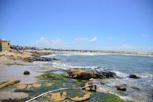 As Algas em Cabo Polônio