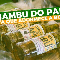 O Jambu no Pará, a erva que adormece a boca