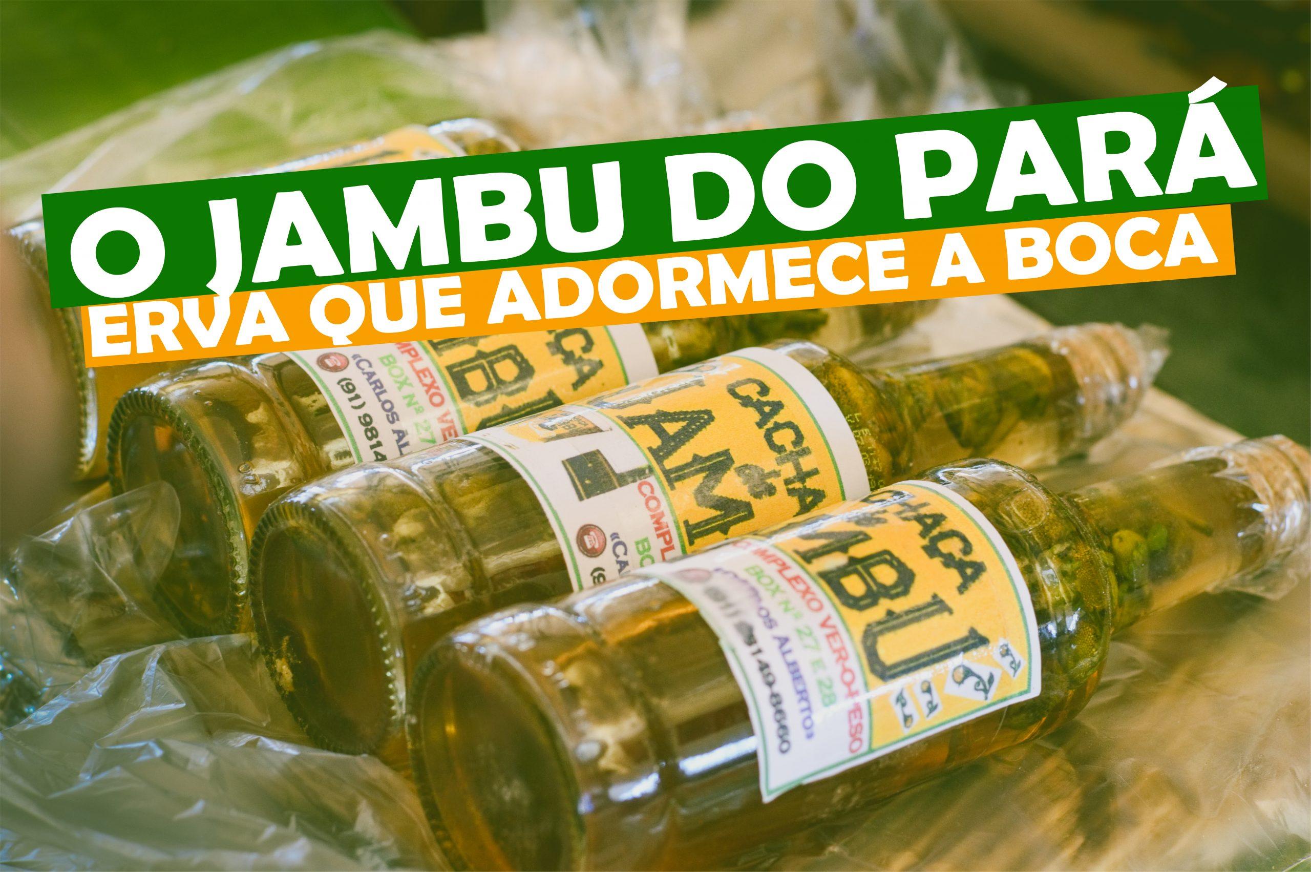 O Jambu do Pará, a erva que adormece a boca