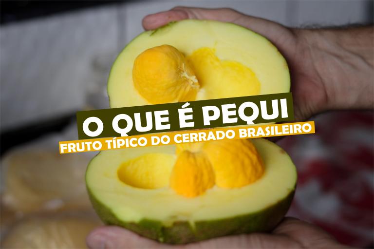 O que é Pequi, fruto típico do cerrado brasileiro